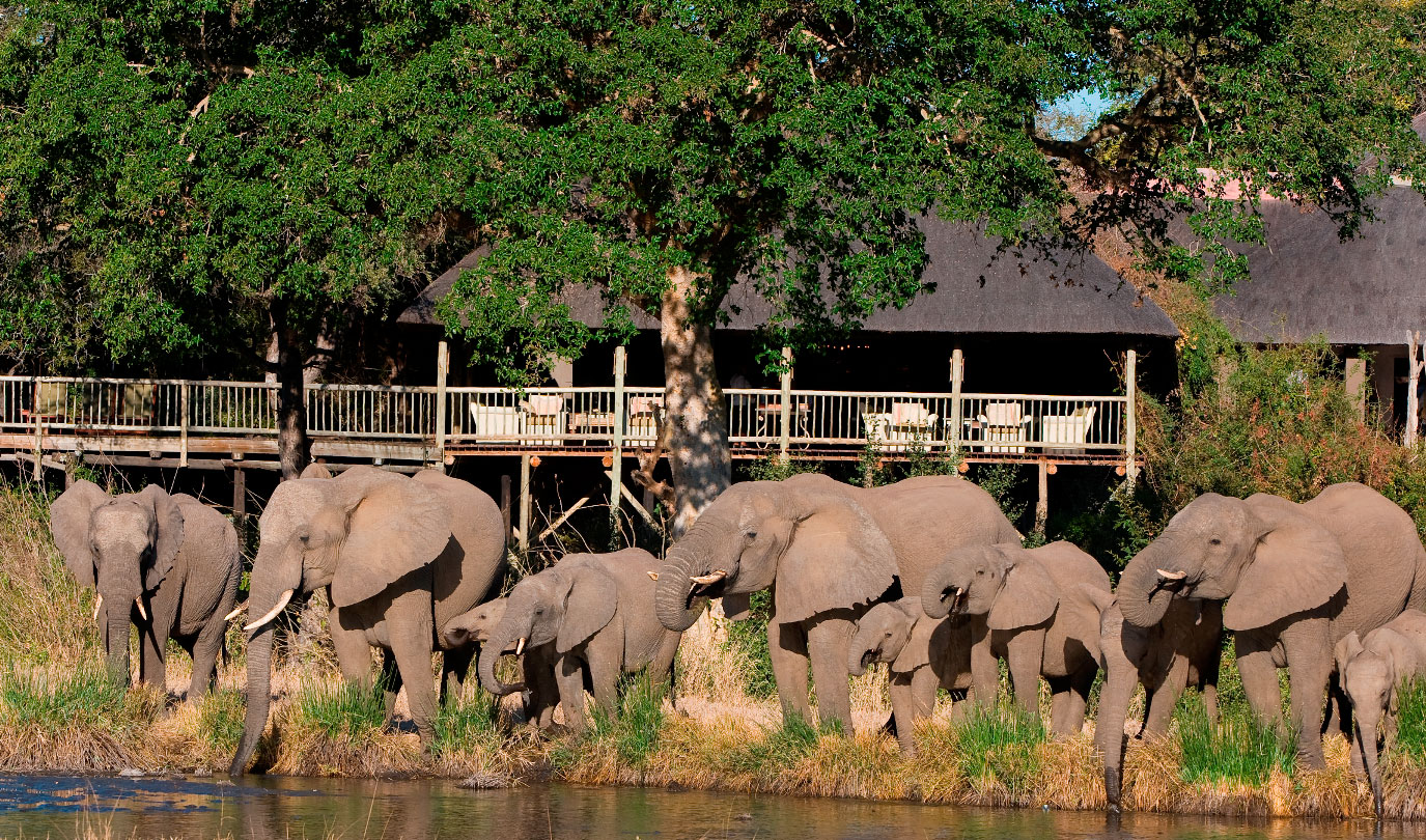 Sabi Sabi - Bush-Lodge