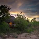 Little-Bush-Camp-Suite-Exterior