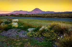 Vulkan im Tongariro Park