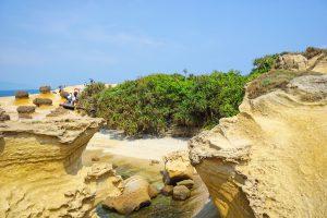 Steine, Bambus und Meer im Yehliu Geopark