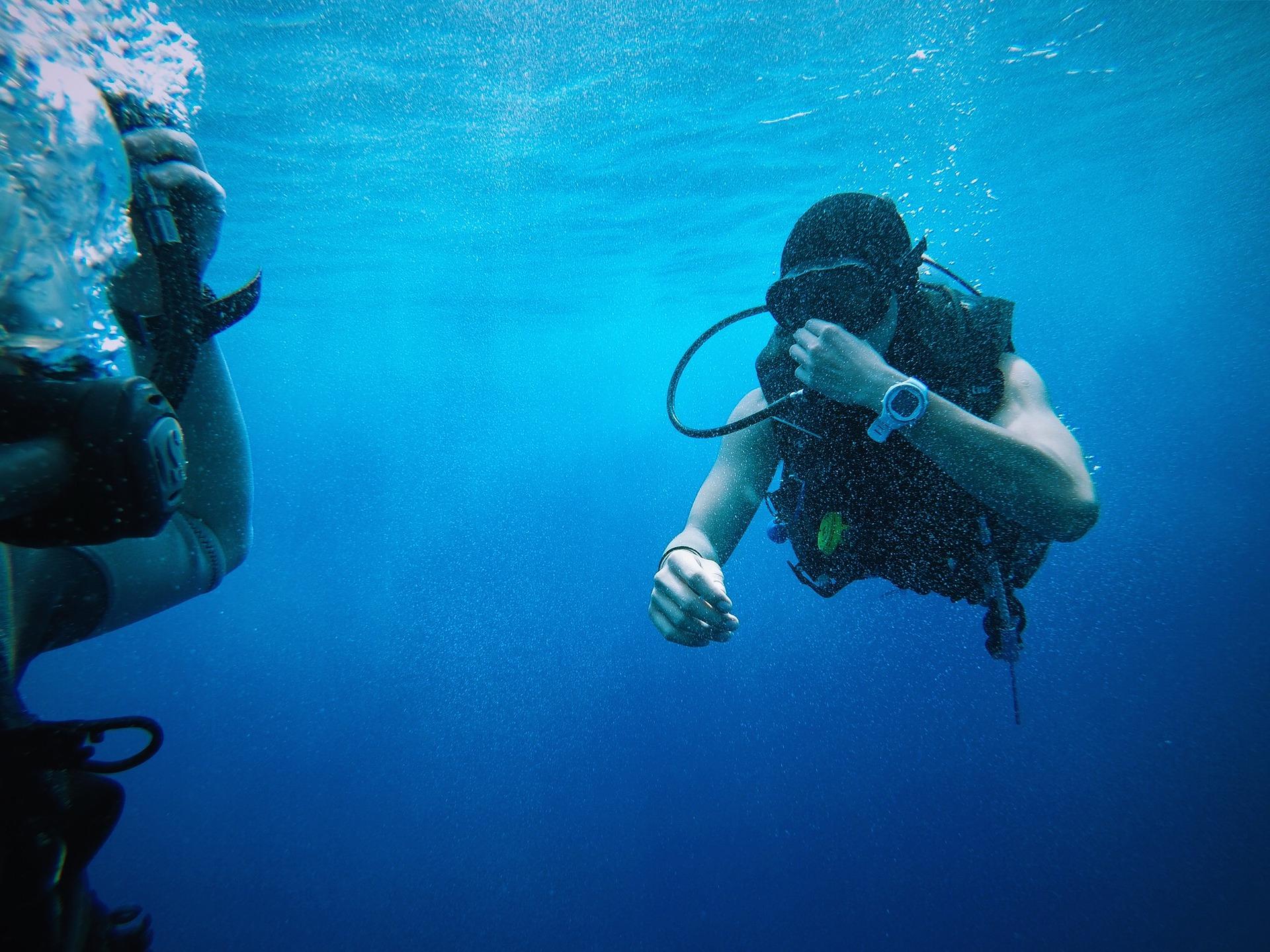 Tauchen im blauen Atlantik vor Madeira