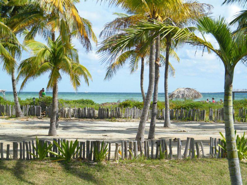 Strand, Palmen und Meer auf Kuba