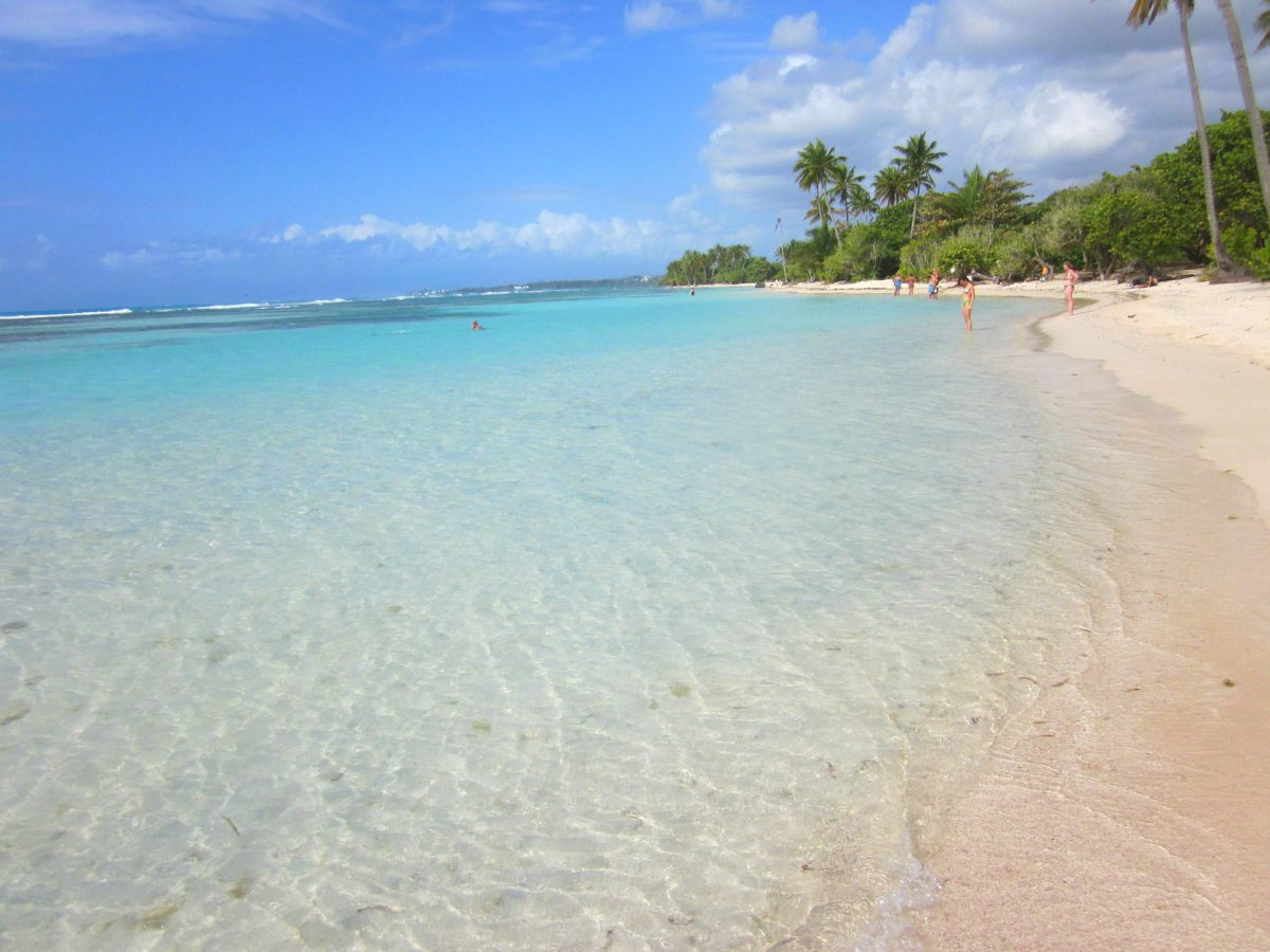 Kristallklares Wasser und feinsandiger weißer Strand - das ist Guadeloupe