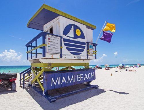 Unvergessliche Tage in Miami