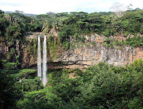 Die besten Aktivitäten auf der Trauminsel Mauritius