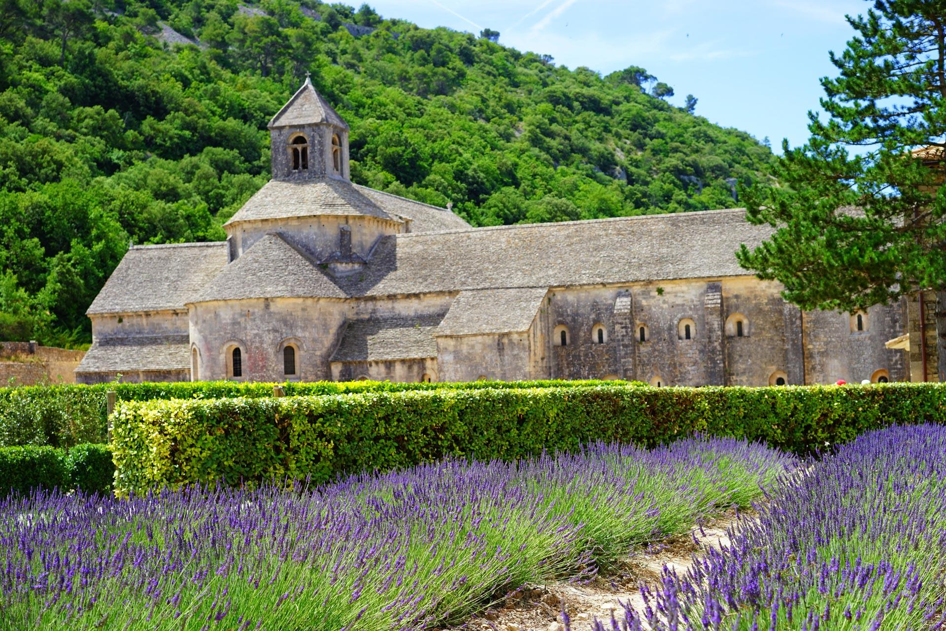 Abbaye de Senanque - Lavendelfelder
