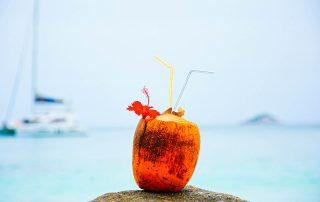 Seychellen, Kokosnuss