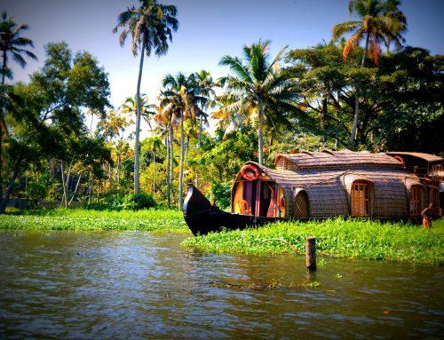 Kerala: Eine persönliche Liebeserklärung