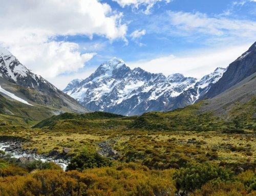 Work and Travel Neuseeland | Erfahrungen in Mittelerde