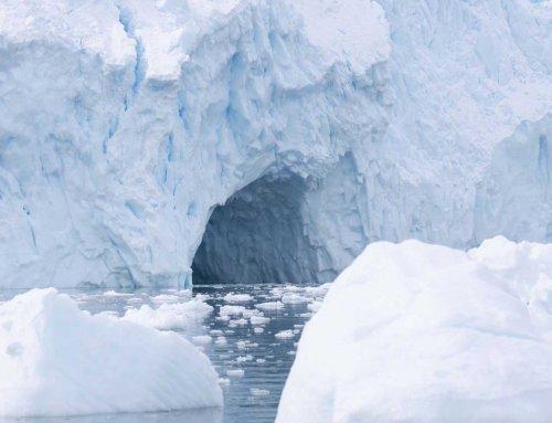 Reisebericht Kreuzfahrt in die Antarktis, Teil 10