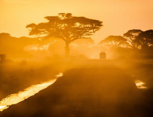 Namibia – Zwischen Safari und deutscher Geschichte